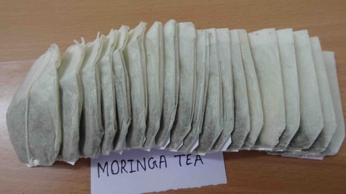 Moringa Tea Bags exporter  India